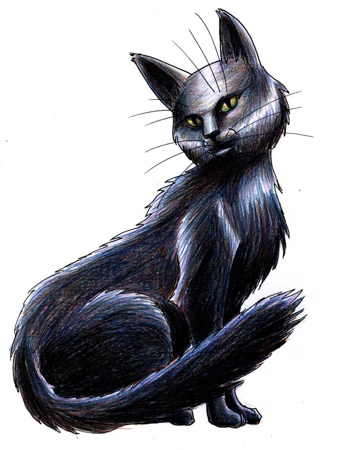 kittyrender